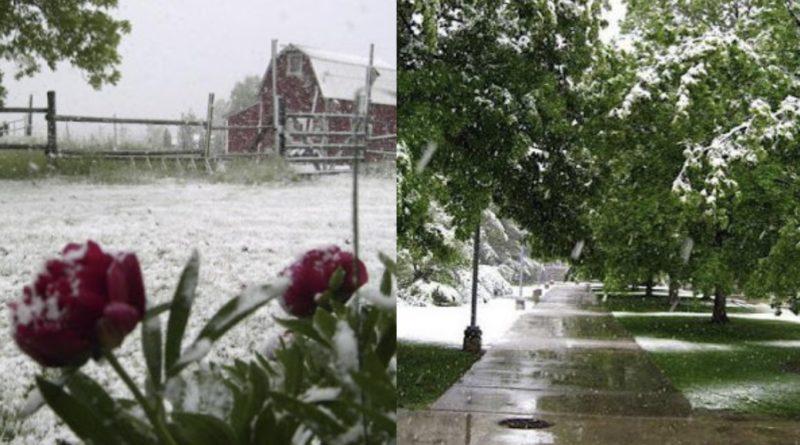 Літню спеку різко змінять морози і снігопади: синоптики поділилися прогнозом погоди до кінця осені